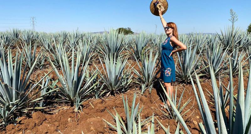 Meksykańskie życie